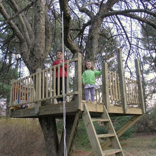 Save Money And Time By Keeping It Simple Treehouse By