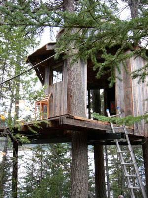 free standing tree house plans ideas images frompo