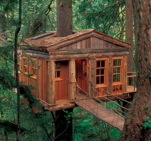 Five simple tips for harmonious treehouse building for Easy to build tree houses