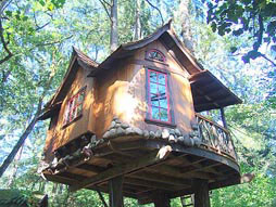 A Pete Nelson Family  Treehouse