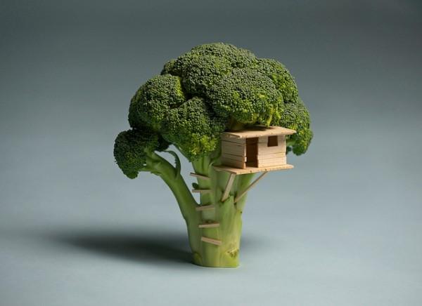broccoli tree matchstick treehouse