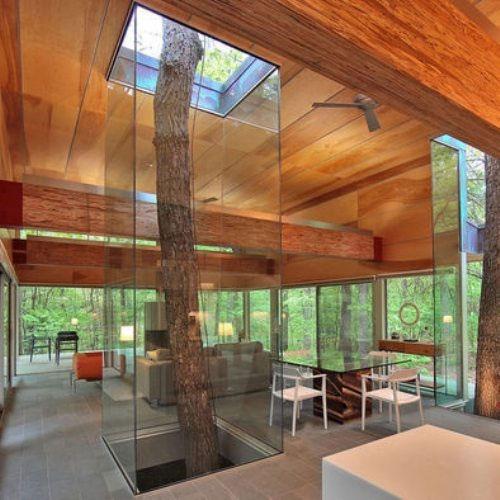 tree glass pass through design