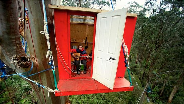 The Little Red Toolangi activist treeehouse