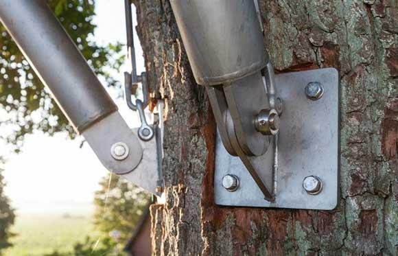 tree-brackets