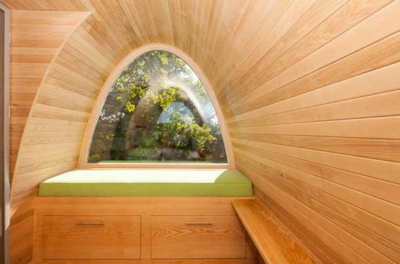 tree-interior