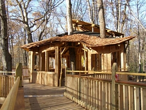 Mt. Airy wheelchair accessible treehouse